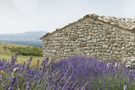 History of L'Occitane