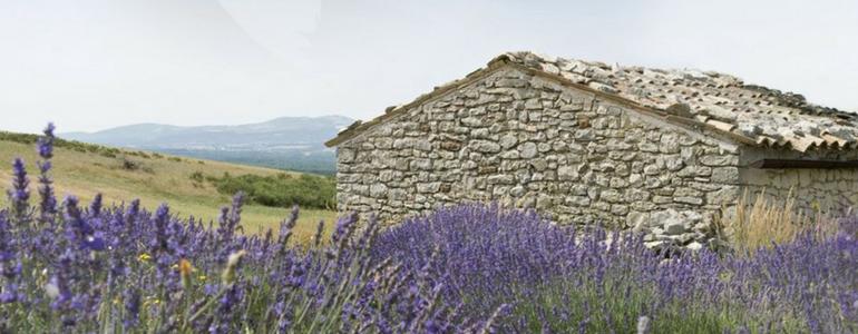 History of L'Occitane