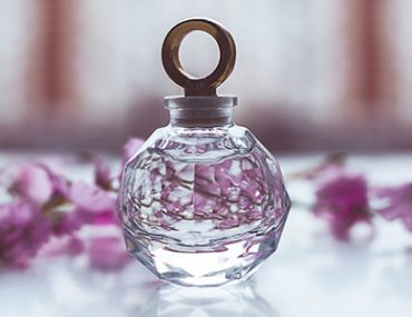 prestige perfume gifts